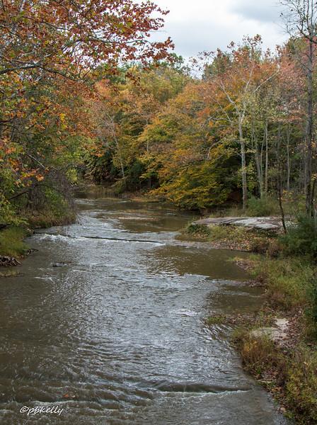 Black River 102216.jpg