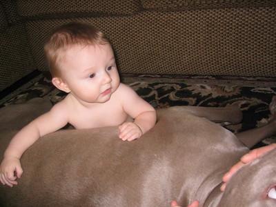 Abraham 6 Months