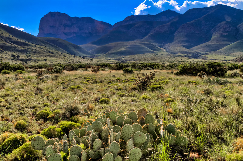 Guadalupe Mountains of West Texas