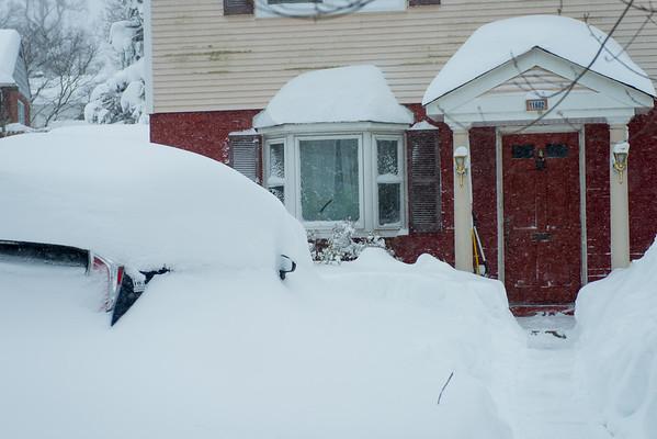 Snow January 2016