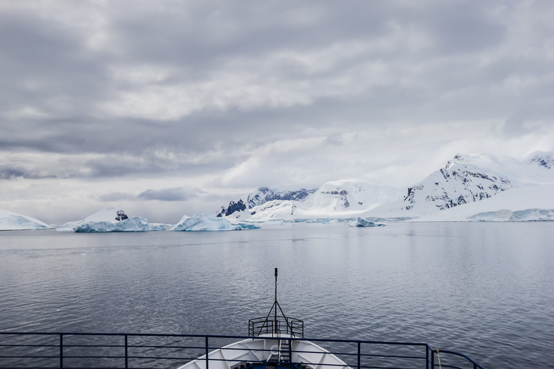 Best Time to Visit Antarctica