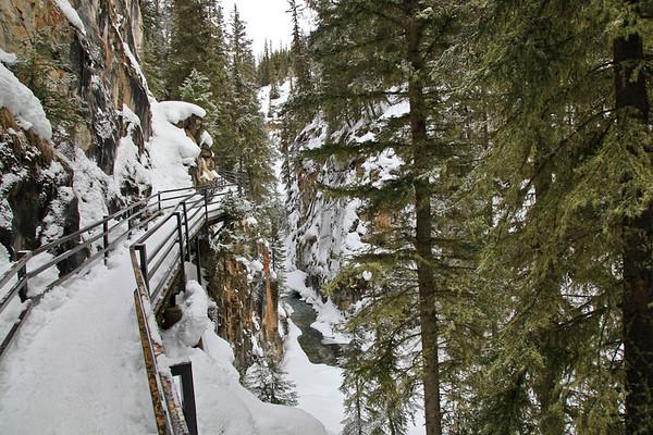 Johnston Canyon Icefalls