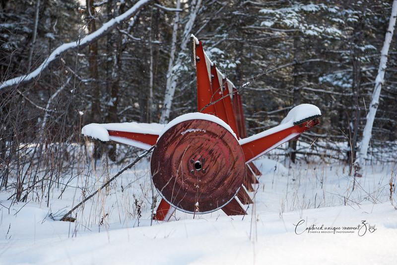 181223 Snow 0068.jpg