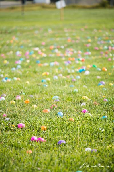 Community Easter Egg Hunt Montague Park Santa Clara_20180331_0008.jpg