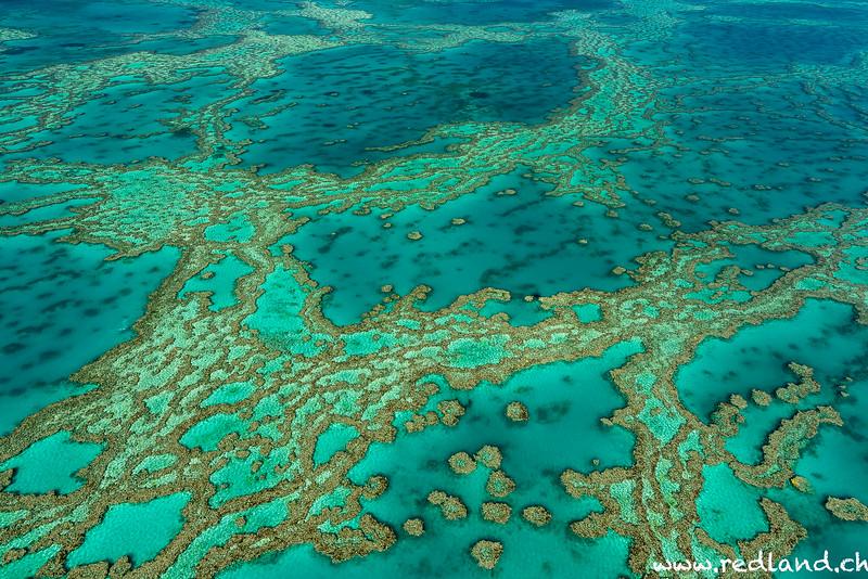 Airle Beach Whitsunday Island Hardy Reef