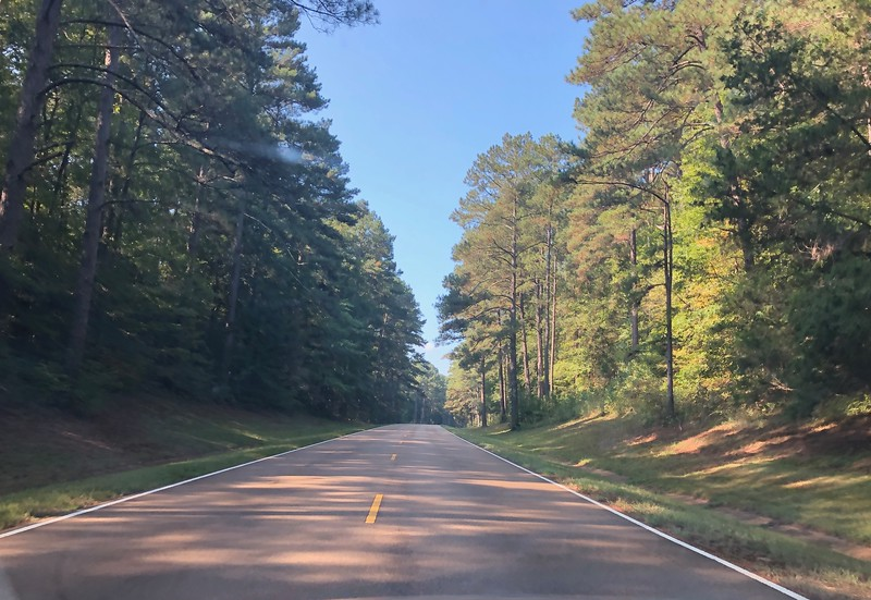 Two-lane Natchez Trace Parkway travels through a long corridor of trees.