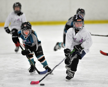 2016-01-17 Twin Rinks Red vs Teal