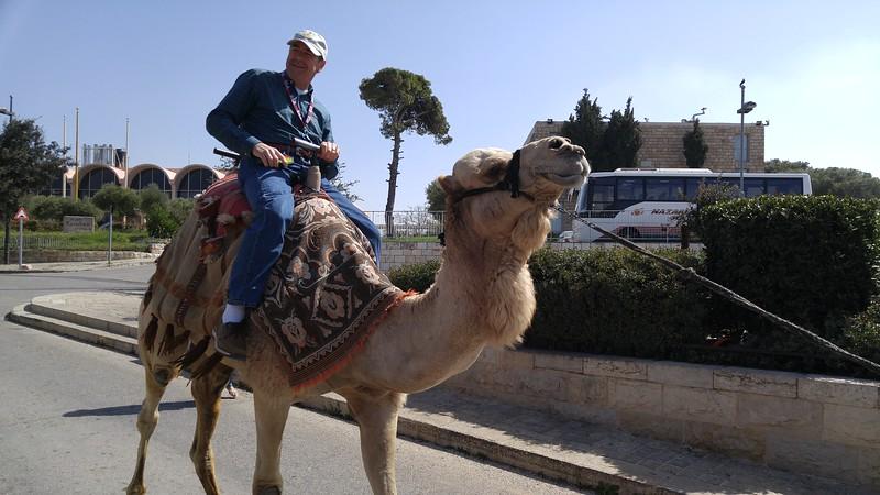 16-camel-ride
