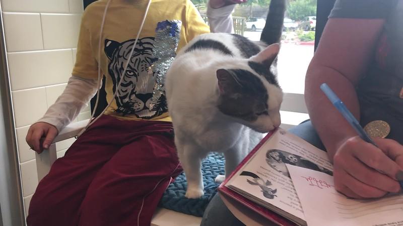 Kitty Literature Program - August 2019