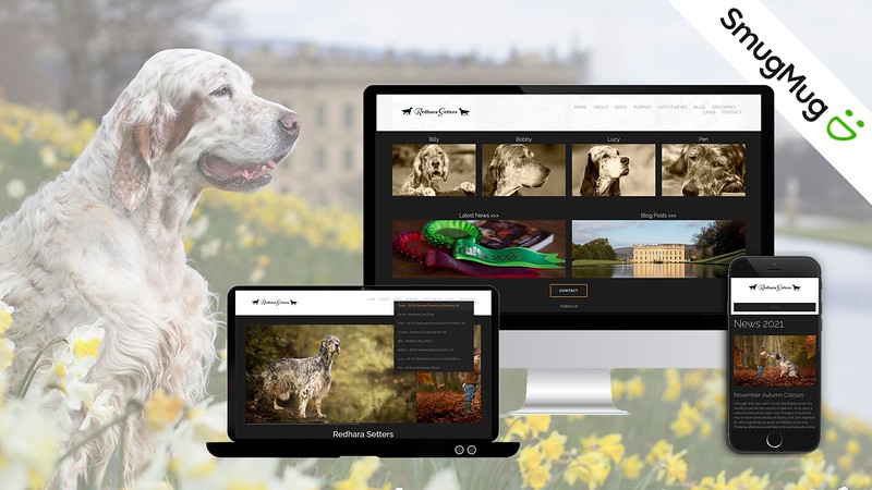 Redhara Setters Website.jpg