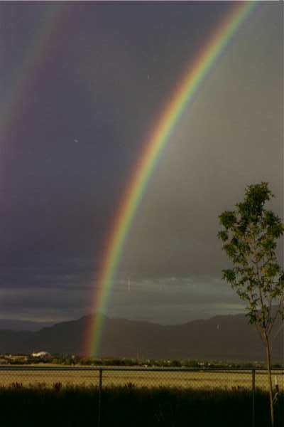 99 Rainbow in backyard.JPG