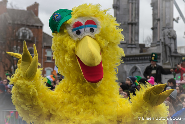 St. Patrick's Day Parade - Cork City