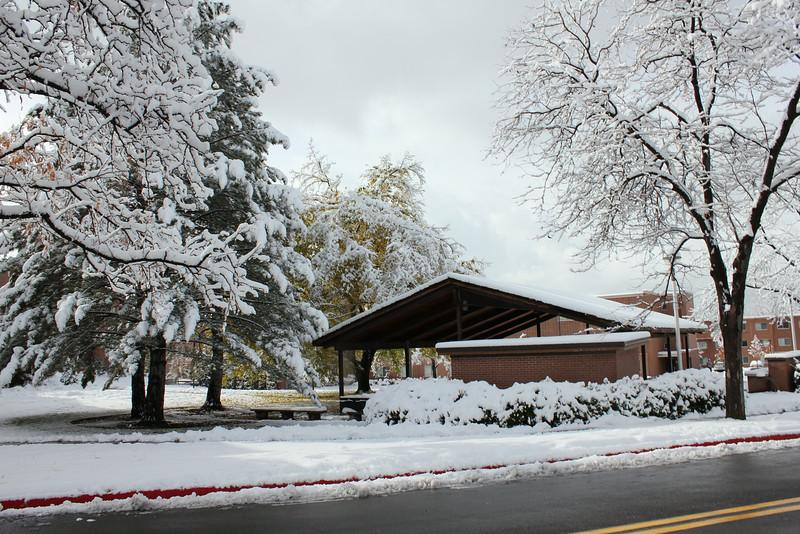 Snowy_Morning_11_10_2012_3315.JPG