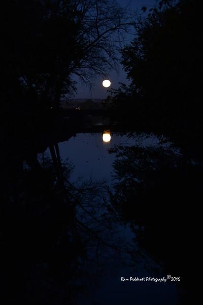 Full Moon_9954.jpg