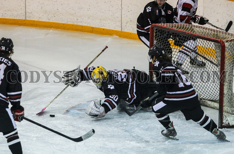 Huskies vs. Voyageurs - Photo 17 Cody Storm Cooper Photography 2014. All rights reserved.