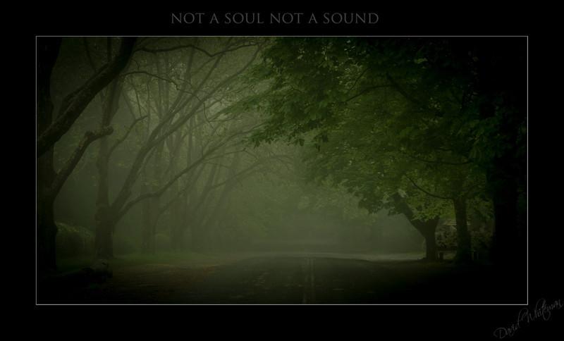 Not a Soul Not a Sound