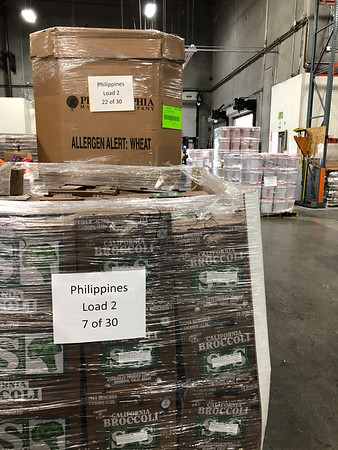 2020 Philippines COVID Food Relief