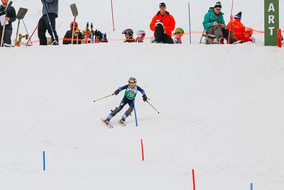 Alpine Slalom