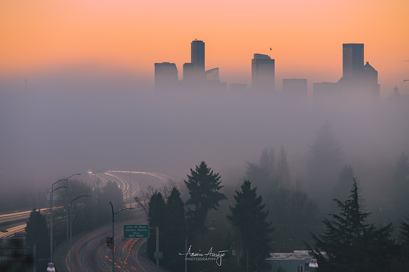 SeattleFogNov2020-6.jpg