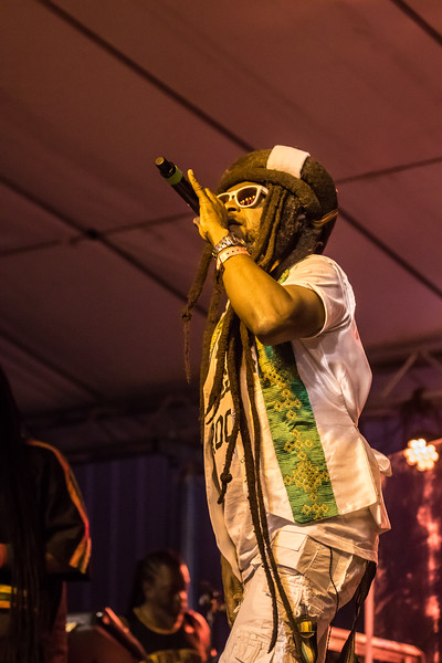 steelpulse-17.jpg