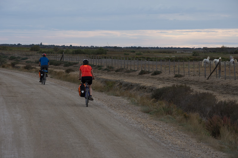 two people biking on a road surrounded by natural landscape