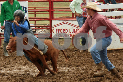 calf, steer, & bull riding