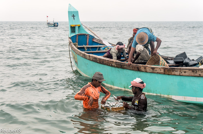 off loading the catch.jpg