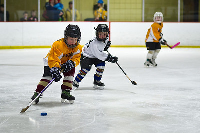 Newburyport Youth Hockey League