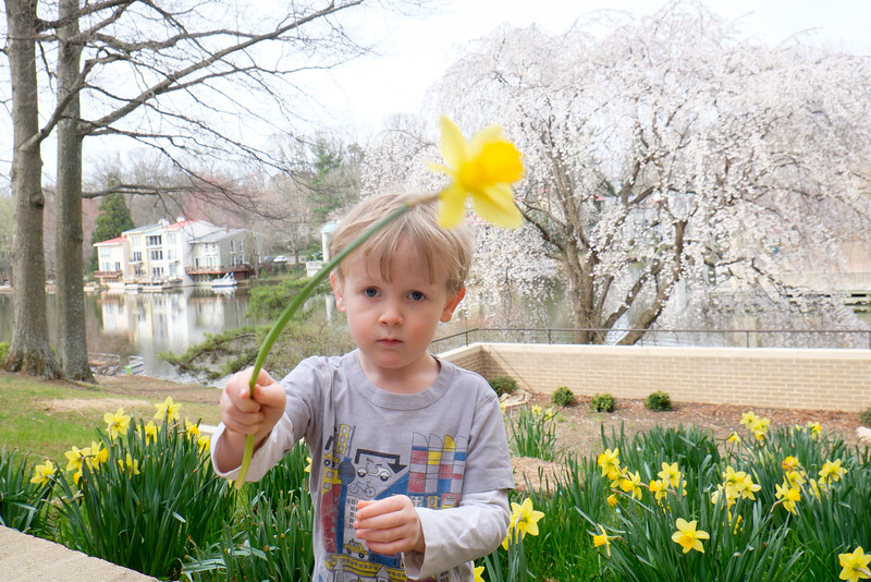 20160322 114 springtime walk.jpg