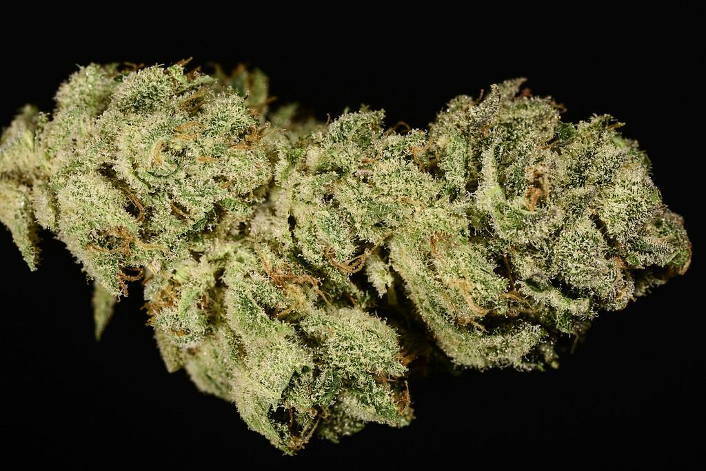 . No. 15: Ultra Sonja (Ry Prichard, The Cannabist)