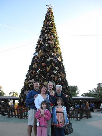 Disney World 2008