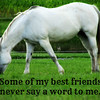 Some of my best friends never say a word to me.