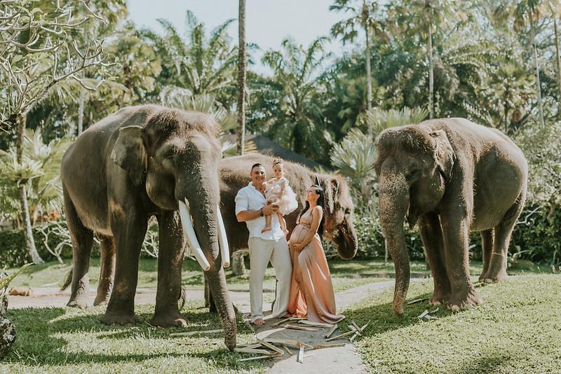 VTV_family_photoshoot_elephants_Bali_ (8).jpg