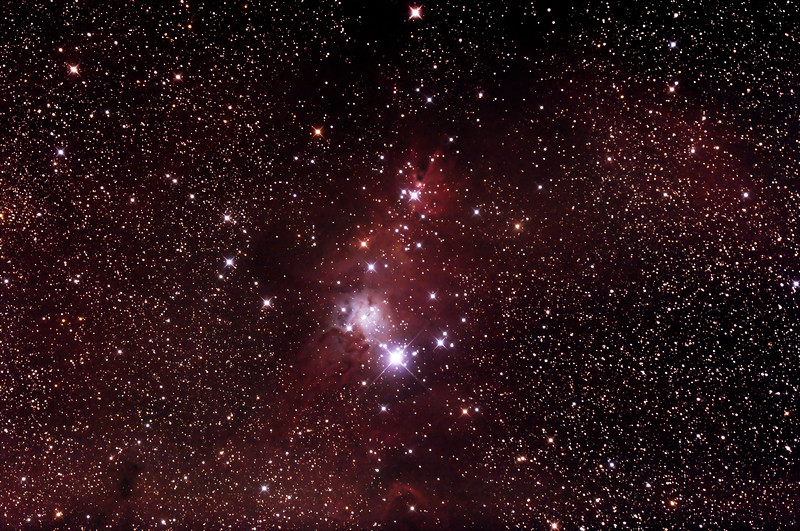 NGC2264 - Christmas Tree Cluster and Cone Nebula - 27/12/2014 (Processed cropped stack)