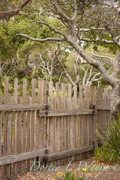 Fencing_008.jpg