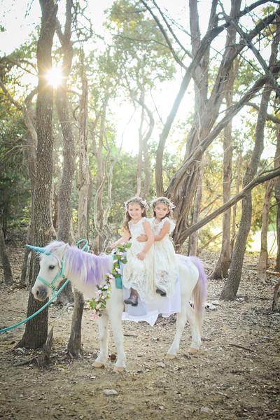 Abreu - unicorns