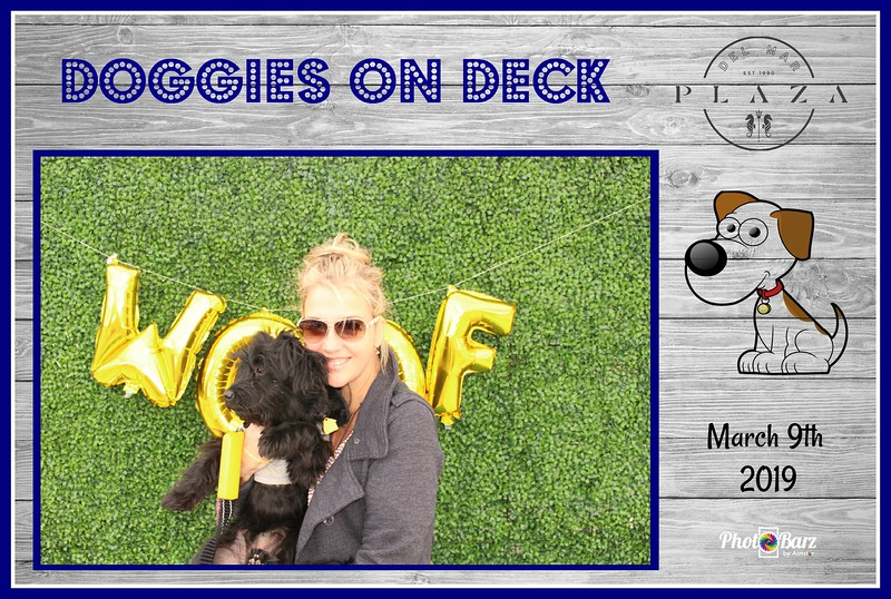 Doggys on Deck68.jpg