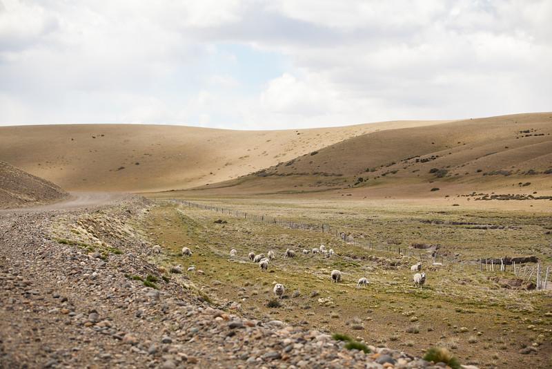 patagonia-1064.jpg
