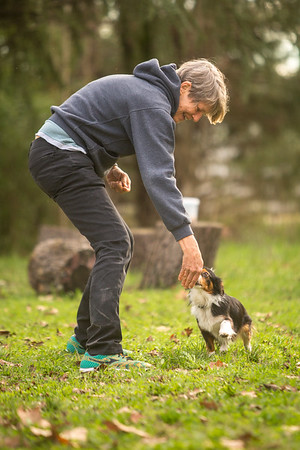 2016 Winter Puppy, Obedience & Motivation