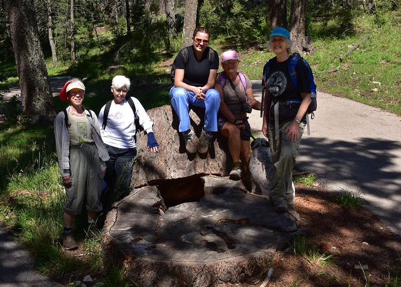NEA_0053-7x5-Hikers.jpg