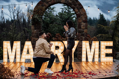 Firas and Nadine Proposal