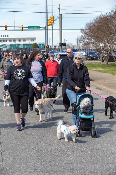 Richmond Spca Dog Jog 2018-780.jpg