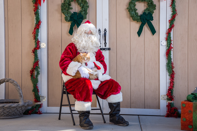 Pet Pictures With Santa-38.jpg