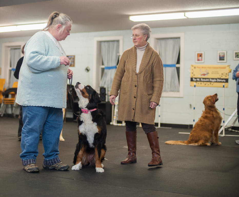 . Instructor Sherrie Start (left) and her dog Dancer work with Sandy Herzog during an exercise teaching dogs good citizenship toward strangers. (Sun photo by Holly Mahaffey/@hollymahaffey)