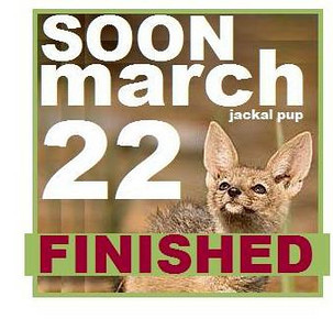 22 MARCH FINISHED