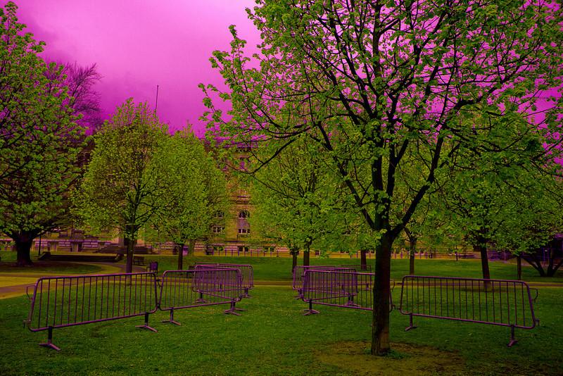 Jardin du Palais Universitaire.