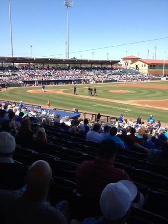 Baseball Game Outing