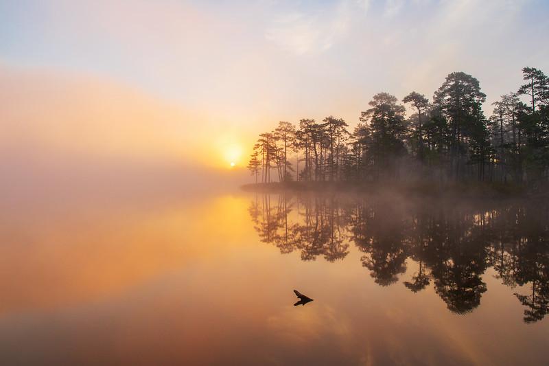 Päike tõuseb üle järve
