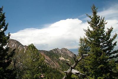 Neffs Canyon Trail To Millcreek