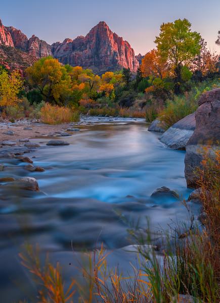 Autumn's Watchman: Zion National Park Fine Art Landscape Nature Photography